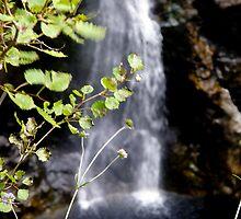 Waterfall by tunna
