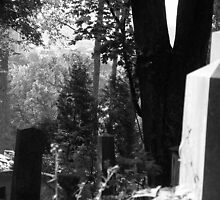 graveyard by kchamula
