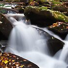Mountain Stream at Autumn by andrewsound95