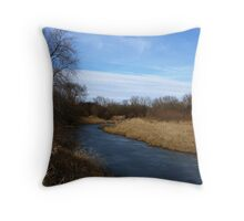 Beaver Swamp and Forest Throw Pillow