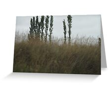 Asparagus Trees Greeting Card