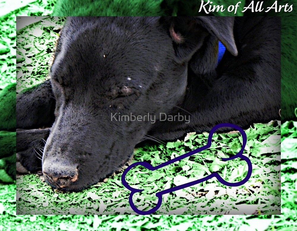 Black Doggy Bam-a-lam by Kimberly Darby