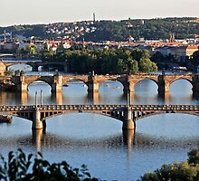 The Bridges of Prague by stjc