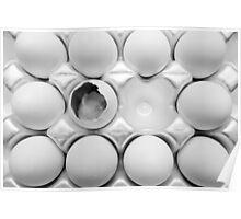 A Dozen Eggs Poster