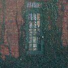 the Forgotten door by katpartridge