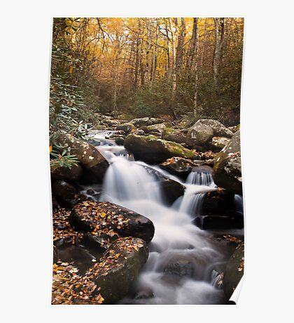 Roaring Fork Waterfall at Autumn Poster