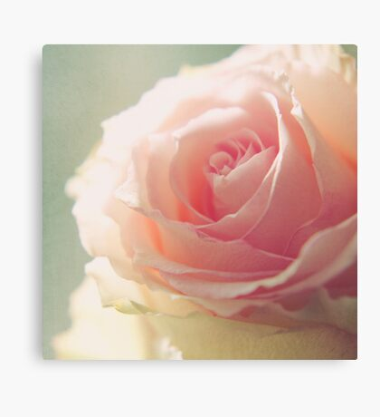 lovely. Canvas Print
