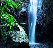 Obi Waters Falls by Tracie Louise