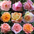 Rose Beauties Collage by BlueMoonRose