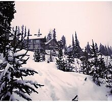 Snowy Paradise by elizacornish