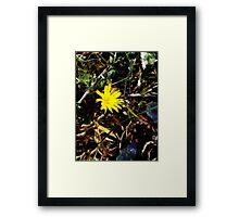 I thought it was winter Framed Print
