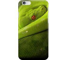 Green Tree Python iPhone Case/Skin