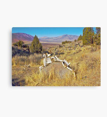 Bone Art Canvas Print