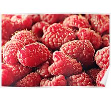 Red Red Raspberries Poster