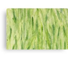 Impression Seaweed Canvas Print