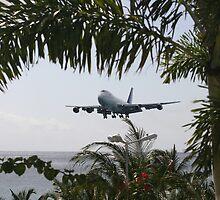 KLM Jumbo Landing by Julian Lowry