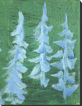 Impression Snowy PIne Trees by Thomas Murphy
