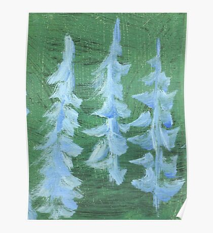 Impression Snowy PIne Trees Poster