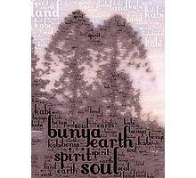 Bunya Dreaming Photographic Print