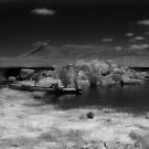 Lake Jindabyne Infrared No.1 by Syd Winer