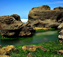 Dragons Rockpool_Caves Beach by Sharon Kavanagh