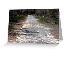 North Head Manly - Avenue of Honour Greeting Card