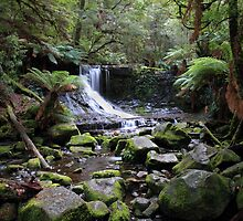 Horseshoe Falls, Mt Field National Park - Tasmania by clickedbynic