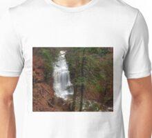 Ganoga Falls Roars in the Misty Glen Unisex T-Shirt