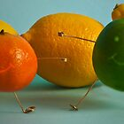 Happy Citrus by Marco Dall'Omo
