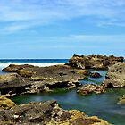 Rockpool Garden_Caves Beach Panorama by Sharon Kavanagh