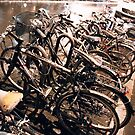 bikes over the rain in Paris by busteradams