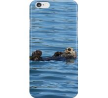 Nature Photo of Relaxed Sea Otter iPhone Case/Skin