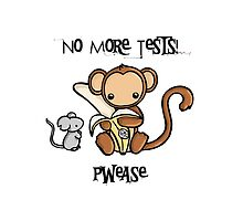 No More Animal Testing by Bianca Loran