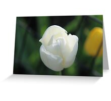New York - Central Park Greeting Card