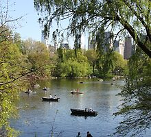 New York - Central Park by Shoots