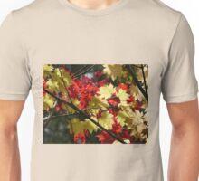 Mt Wilson Unisex T-Shirt