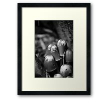 Pixie Hats Framed Print