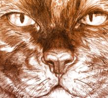 Kittee Sticker