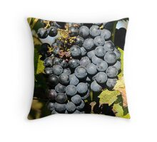 Cabernet Grapes on the Vine Throw Pillow