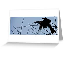 Anhingus Roost Greeting Card
