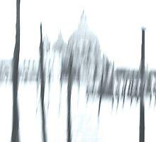 Salute, Venezia by Jenifer Wallis