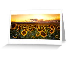 Evenings Of Augusts Past Greeting Card