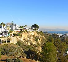 Living on the Edge in Dana Point, California by Joni  Rae