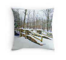 Let There Be Snow Throw Pillow