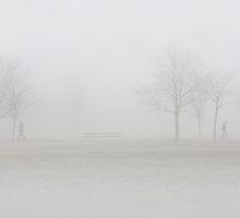 Fog on the stray by Jenifer Wallis