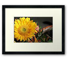 Sunny Fower 4 Framed Print