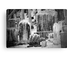 Old Gray Cemetery-1880 Metal Print