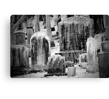 Old Gray Cemetery-1880 Canvas Print