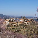 Cherry blossom, Cinctorres, Province of Valencia, Spain by Andrew Jones