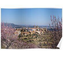 Cherry blossom, Cinctorres, Province of Valencia, Spain Poster